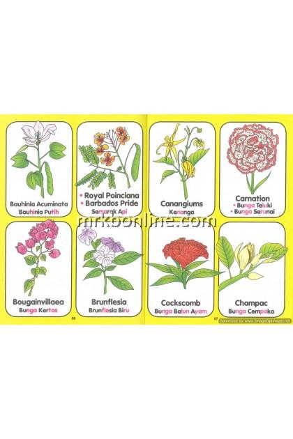 Let's Learn Fruits ,Vegetables & Flowers / Kenali Buah-buahan& Sayur& Bunga